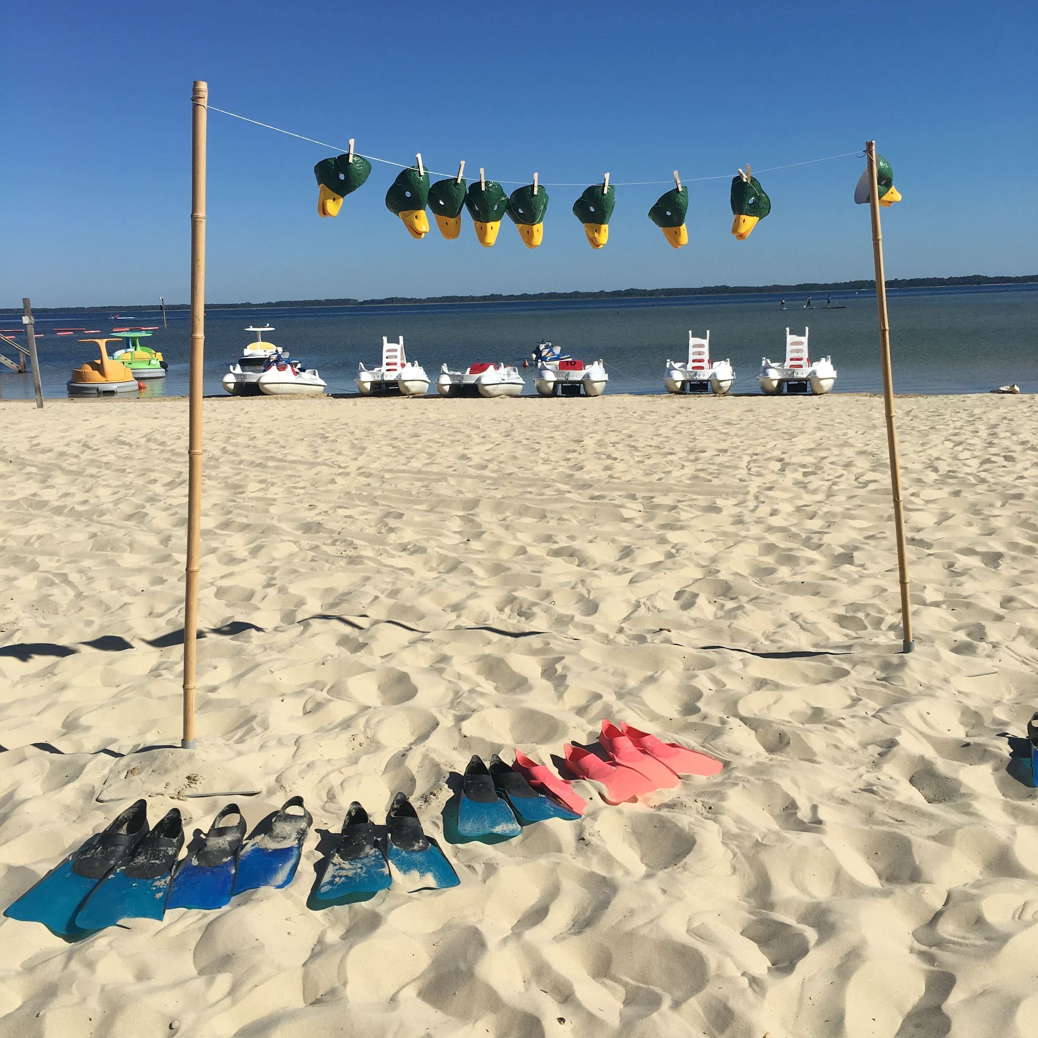 camping, team building, plage, film, tong, canard